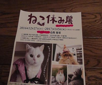 nekoyasumi.jpg