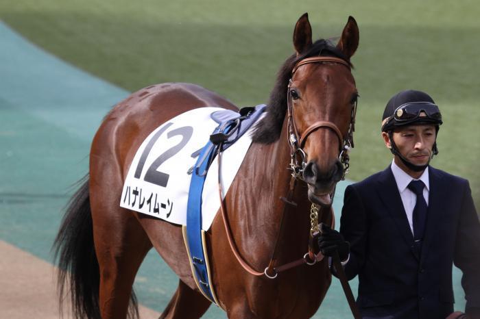 2016 ハナレイムーン 新馬戦5