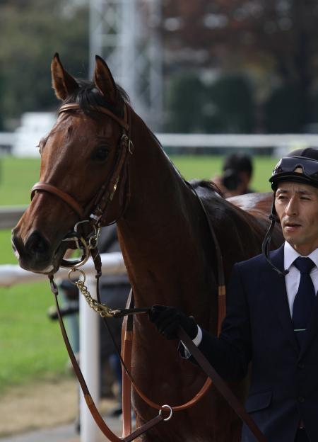 2016 ハナレイムーン 新馬戦6