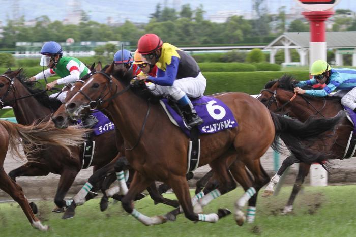 2015 デニムアンドルビー 宝塚記念4