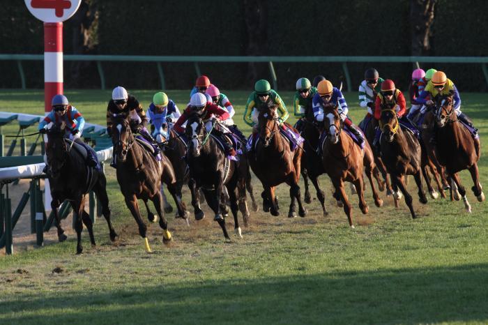 2016 有馬記念レース1