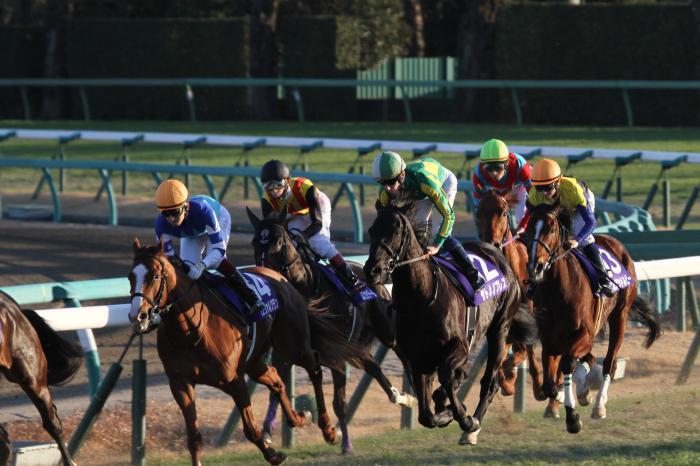 2016 有馬記念レース2