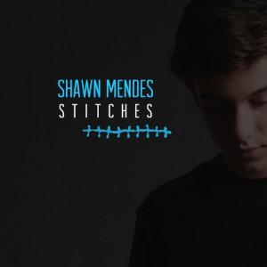 ShawnMendes_Stitches.jpg