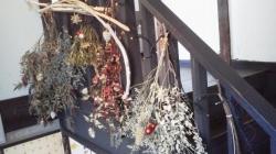 谷中 萩荘のクリスマス