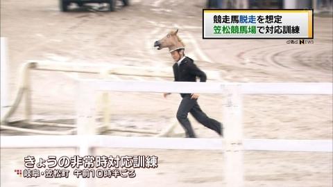 笠松競馬場の馬の訓練風景