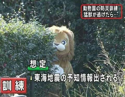 東海地震の予知情報が出された想定で 着ぐるみライオン