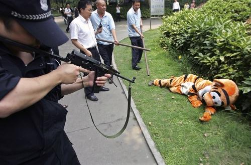 中国・成都市動物園でトラが逃げたとの想定の訓練