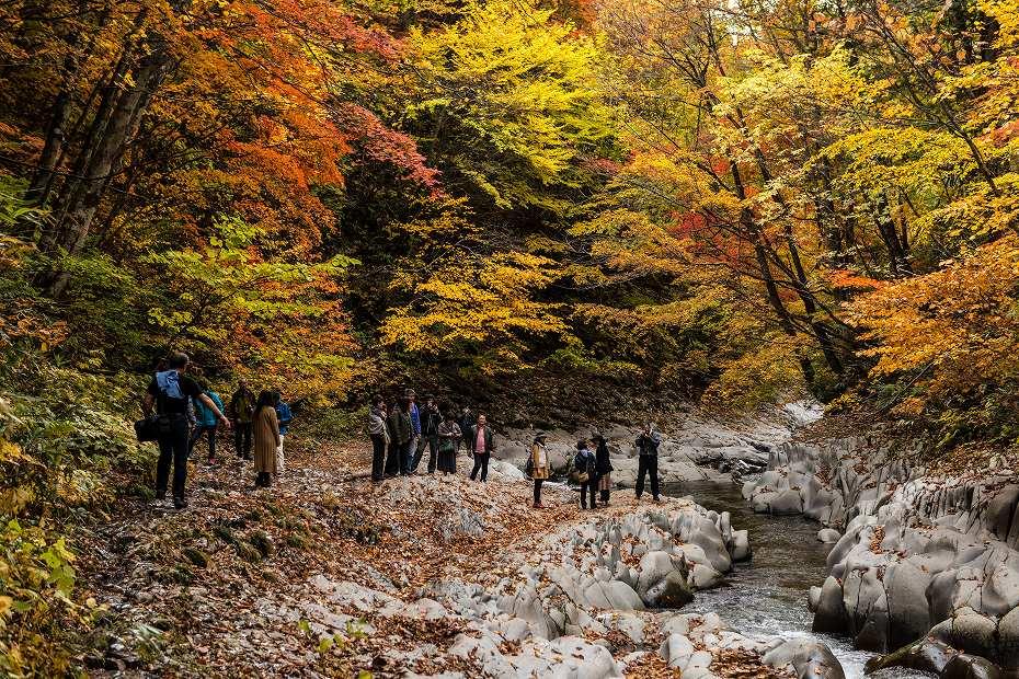2016.10.23中津川渓谷9