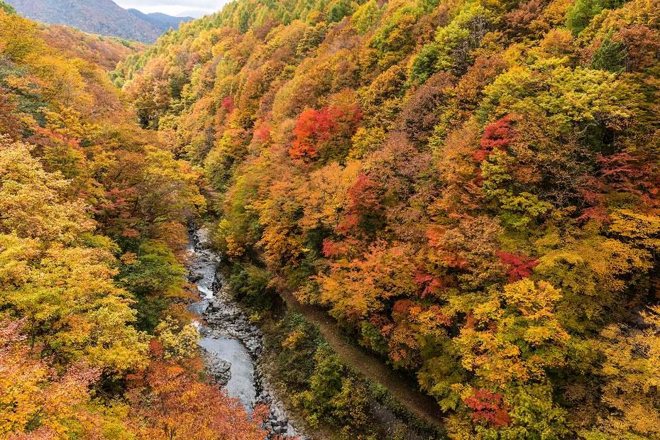 2016.10.23中津川渓谷1