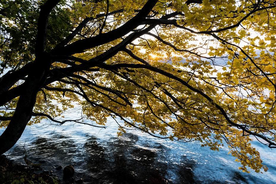 2016.10.28十和田湖の朝景3