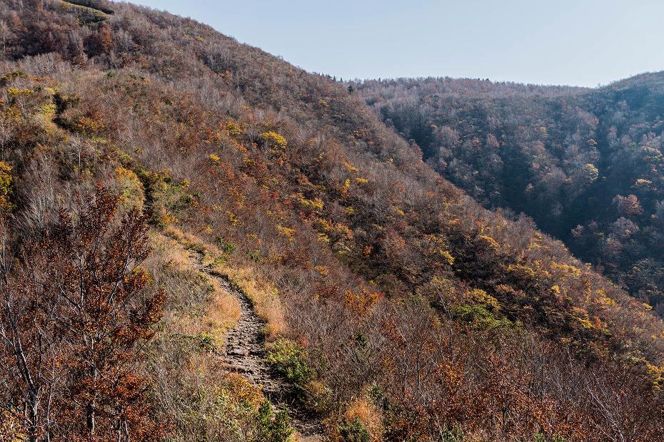 2016.11.07取立山2こつぶり山への坂