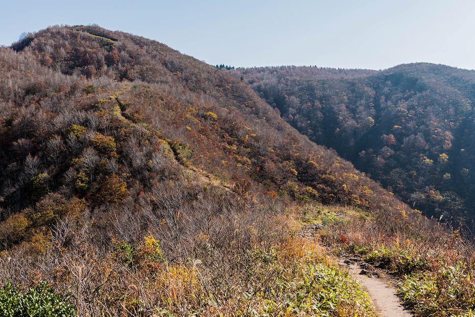 2016.11.07取立山1こつぶり山への坂