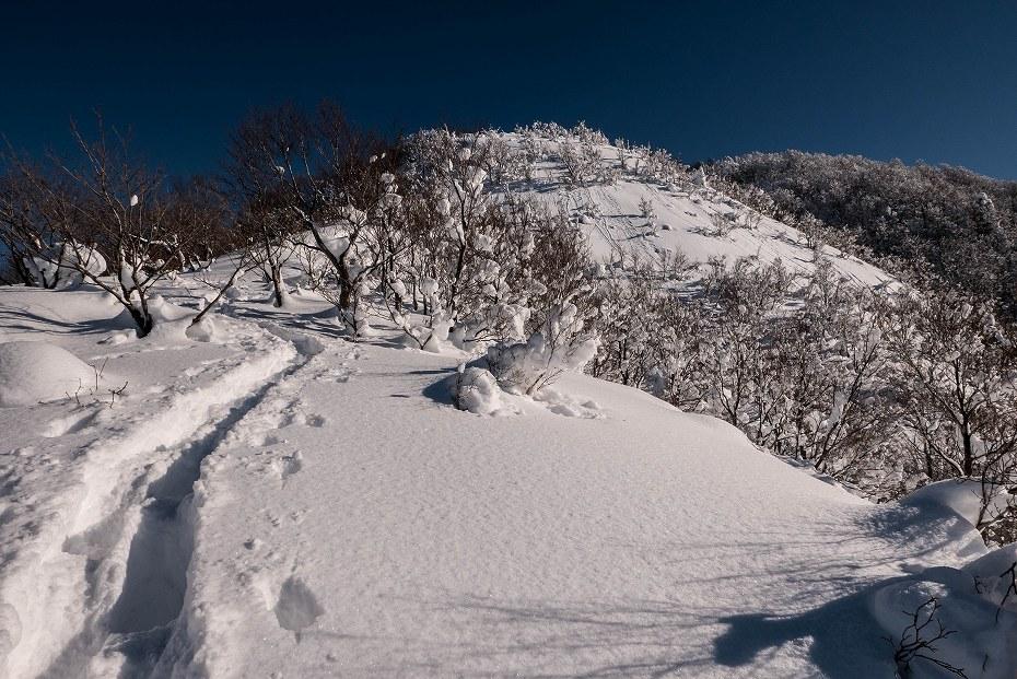 2017.01.26取立山13