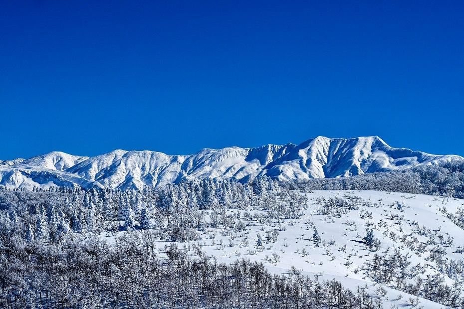 2017.01.26取立山山頂から3