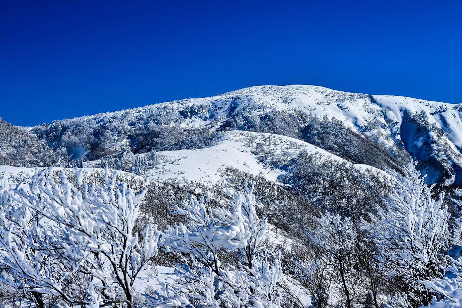 2017.01.26取立山から1339mへ17