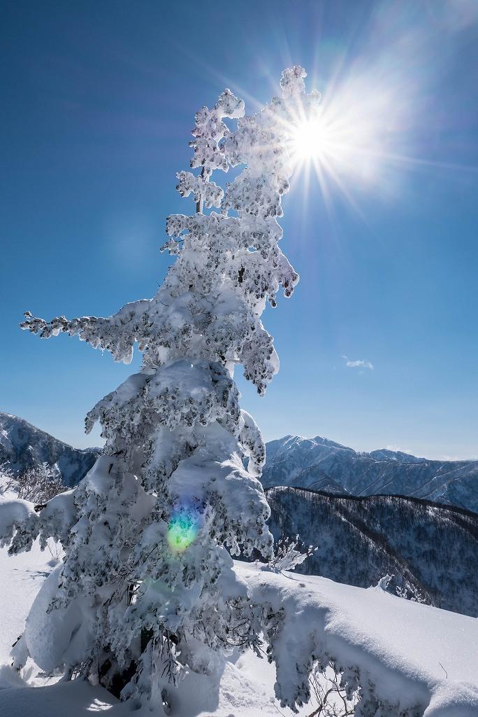 2017.01.26取立山から1339mへ7
