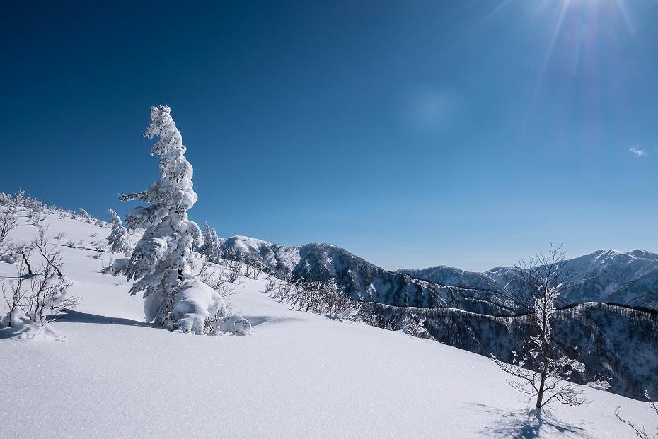 2017.01.26取立山から1339mへ6