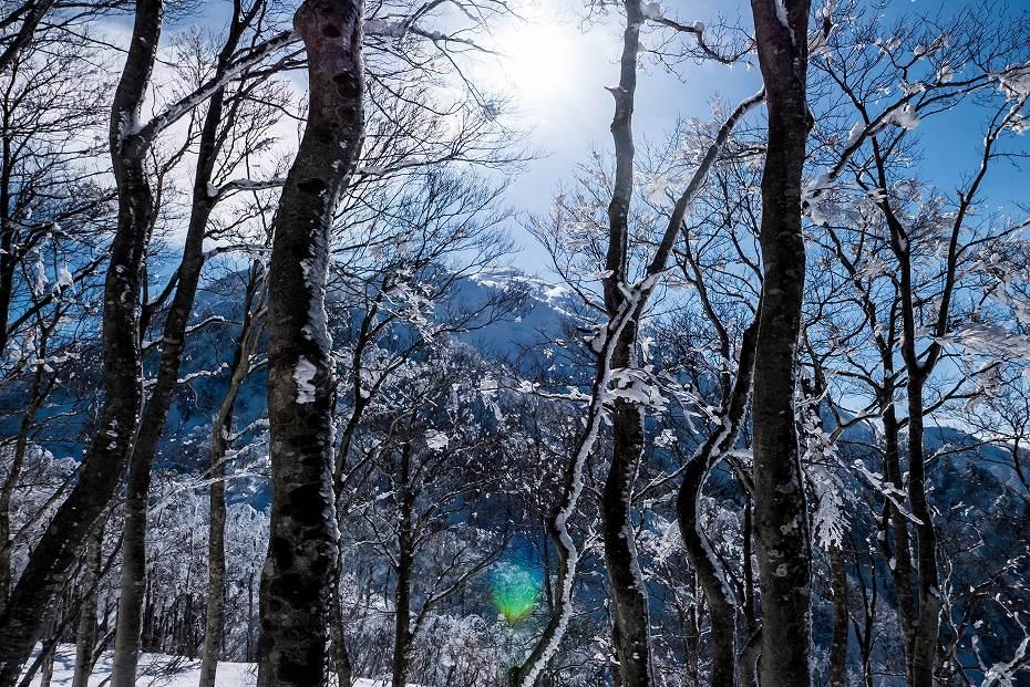 2017.02.04荒島岳15