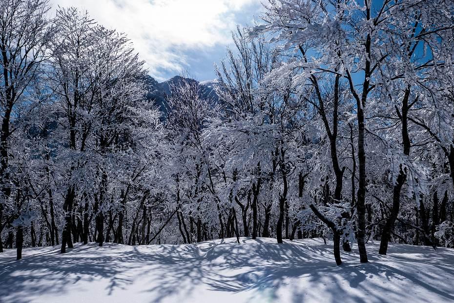 2017.02.04荒島岳12