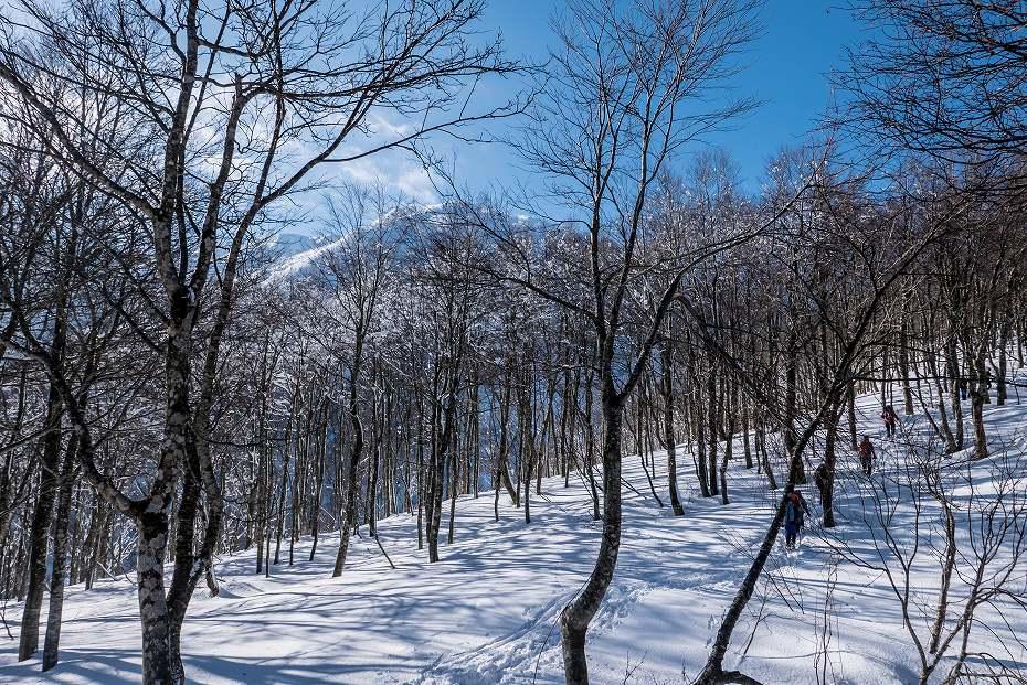 2017.02.04荒島岳7