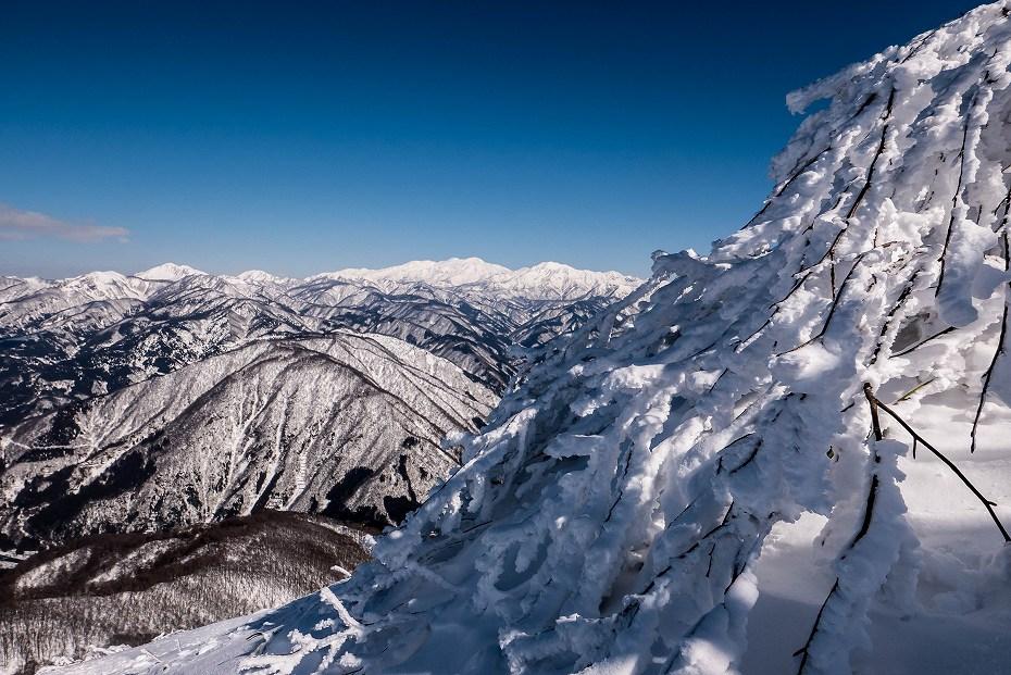 2017.02.04荒島岳もちがかべ~頂上9