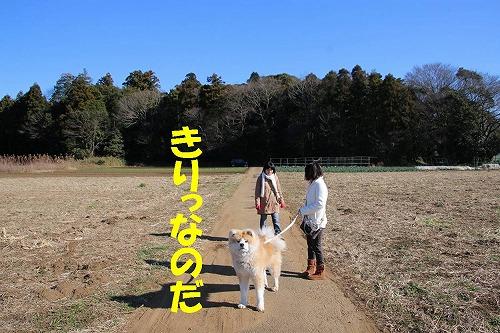 s-170103-2.jpg