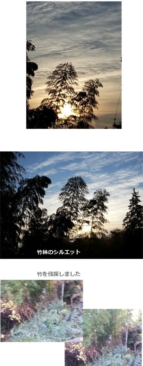 201612082.jpg