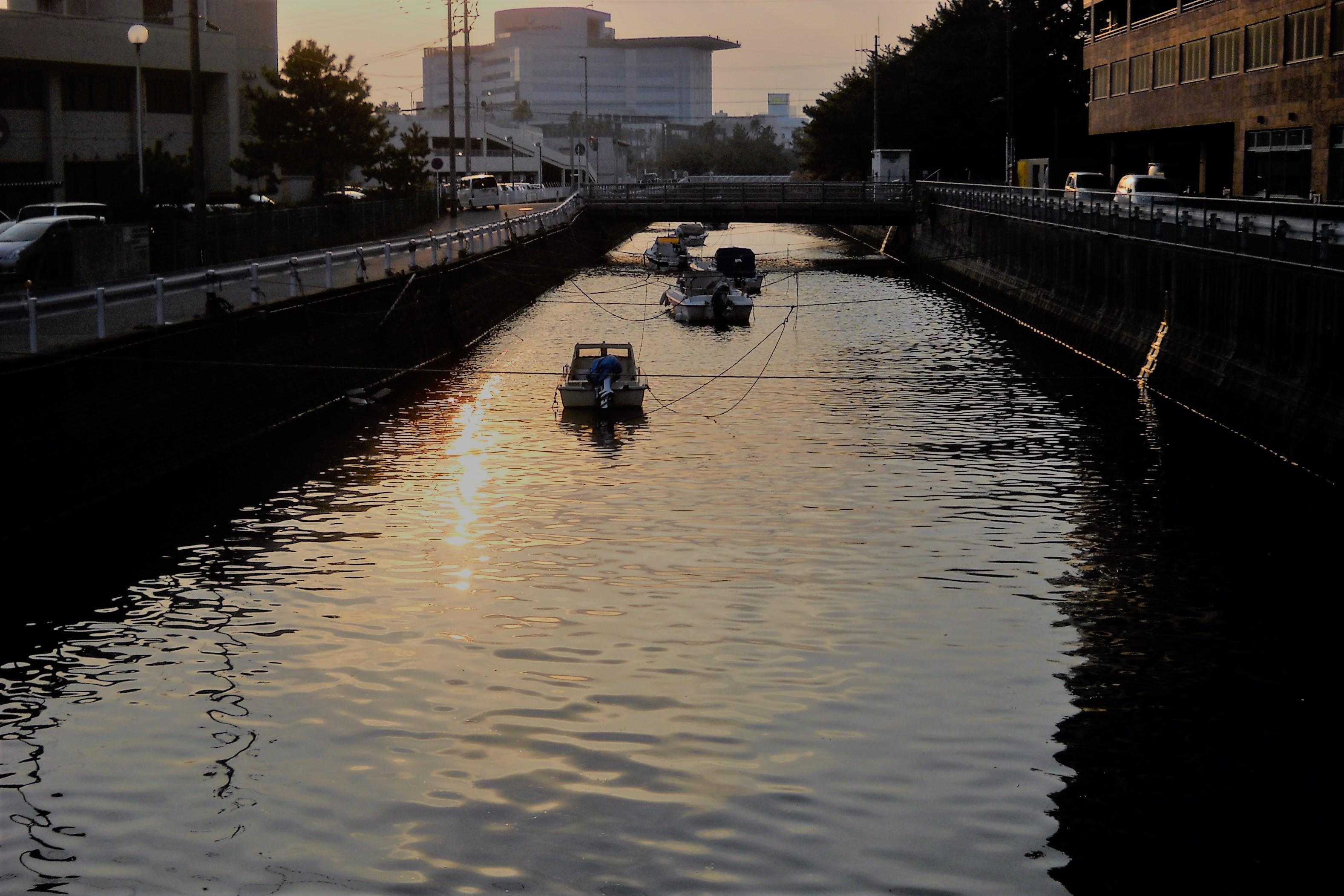 夕方の荒田川