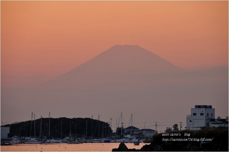 20161118seita005.jpg