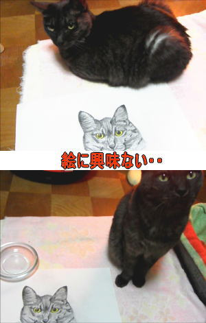 猫の似顔絵