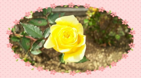 image3bbbbb.jpg