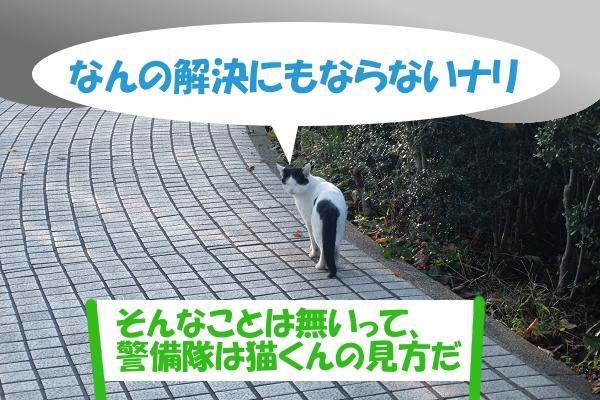 なんの解決にもならないナリ 「そんなことは無いって、警備隊は猫くんの見方だ」