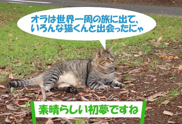 オラは世界一周の旅に出て、いろんな猫くんと出会ったにゃ 「素晴らしい初夢ですね」