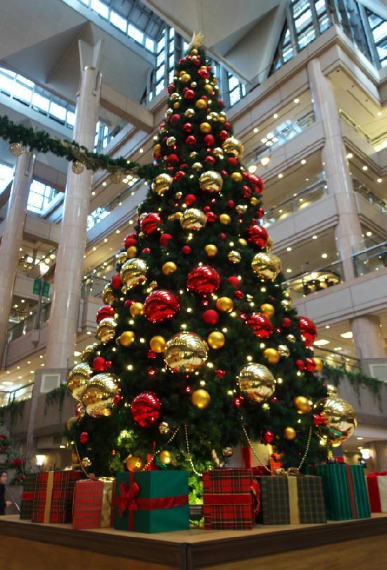 クリスマスツリー222