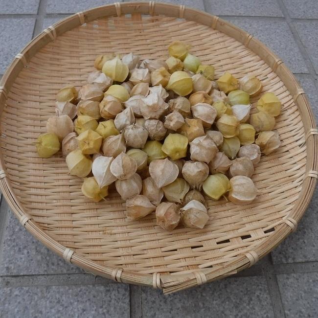 収穫953