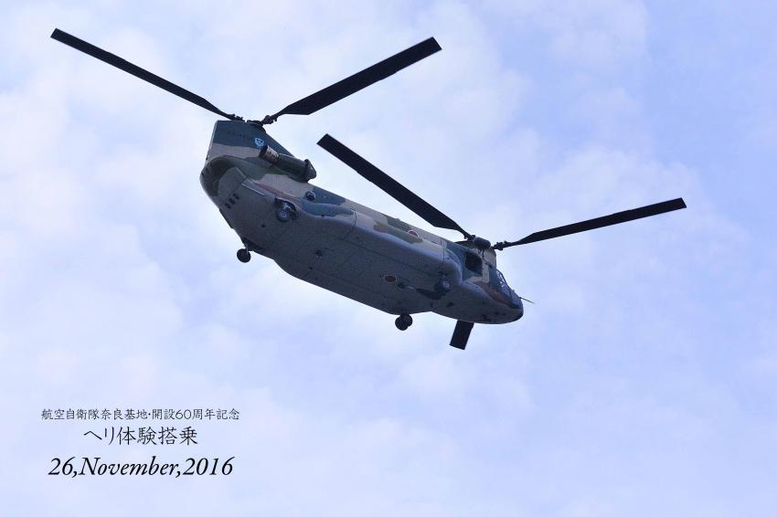 DSC_4585-L_convert_20161129140956.jpg