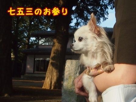 blog8601a.jpg