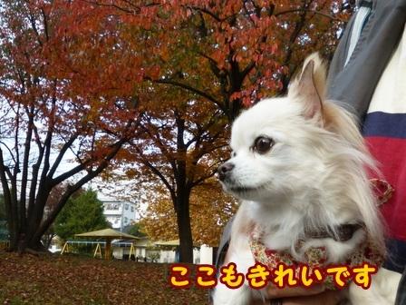 blog8634a.jpg