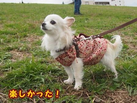 blog8715a.jpg