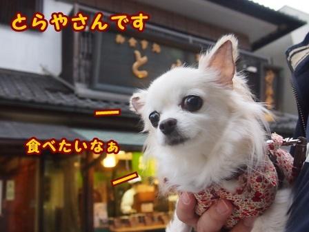 blog8722a.jpg