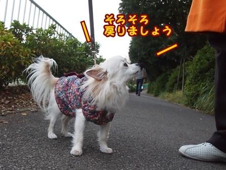 blog8761a.jpg
