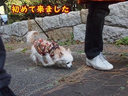 blog8782a.jpg