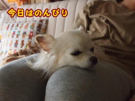 blog8809a.jpg