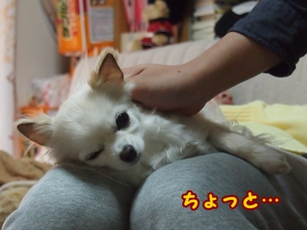 blog8821a.jpg