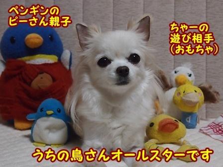 blog8856a.jpg