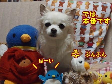 blog8867a.jpg