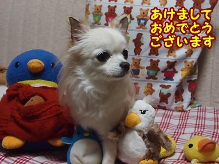 blog8868a.jpg