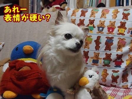blog8869a.jpg