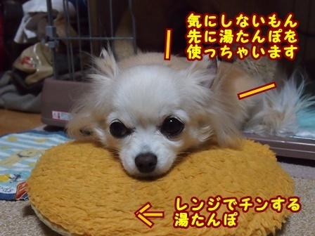 blog8877a.jpg