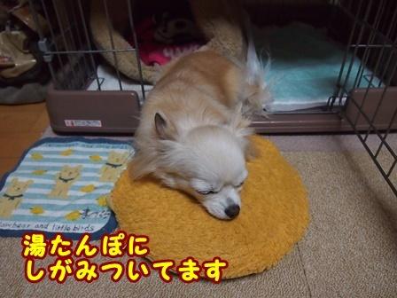 blog8878a.jpg